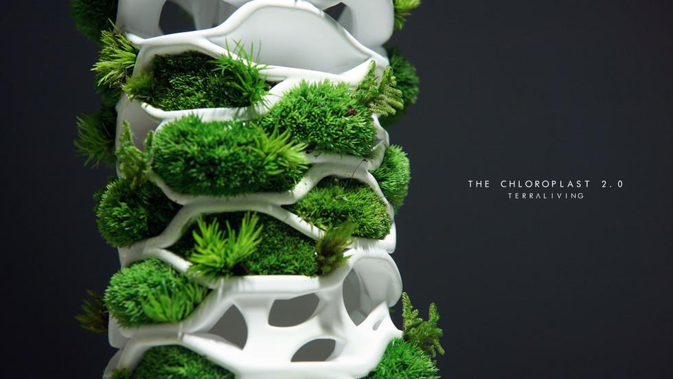 the-chloroplast-2.0_11.jpg