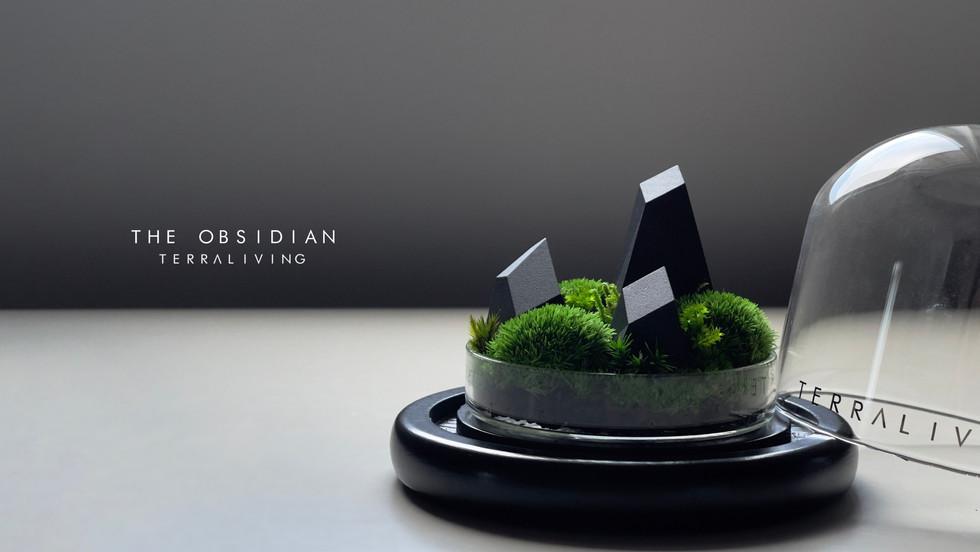 obsidian_main-photo.jpg