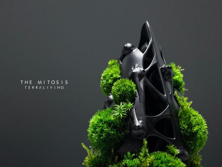 The Mitosis - Cytokinesis, A bioarchitecture & biomorphism inspired BioArt, Botanical Sculpture