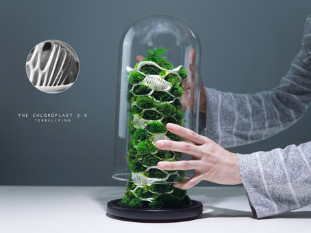 The Chloroplast 3.0 - an Organic Botanical Sculpture by TerraLiving