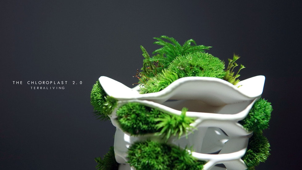 the-chloroplast-2.0_19.jpg