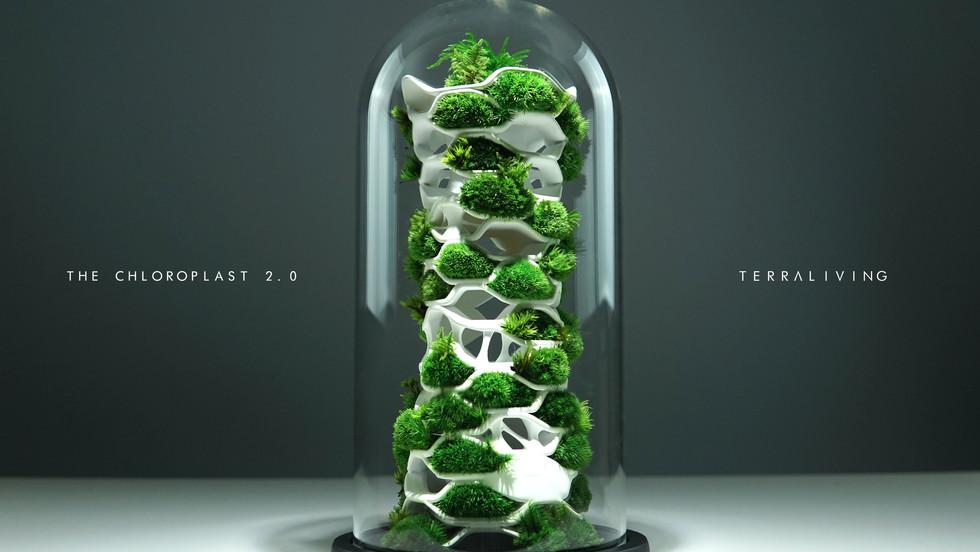 the-chloroplast-2.0_4.jpg