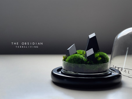 The Obsidian, 3D Printed Preserved Moss Terrarium by TerraLiving