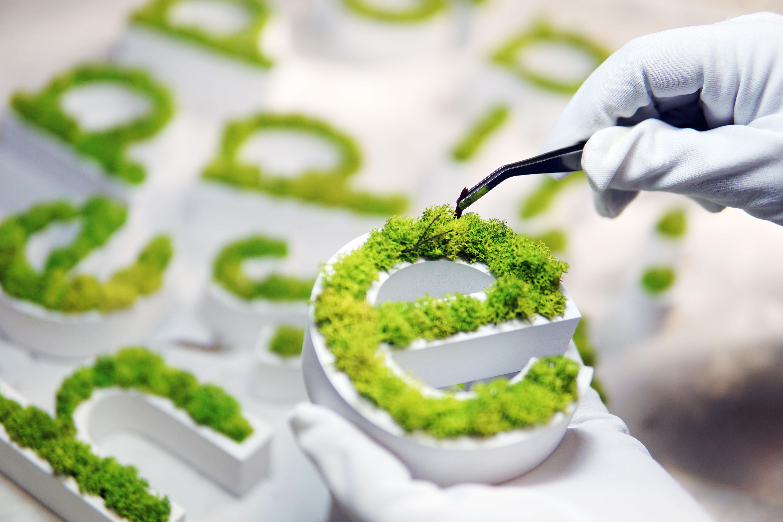 Moss Branding