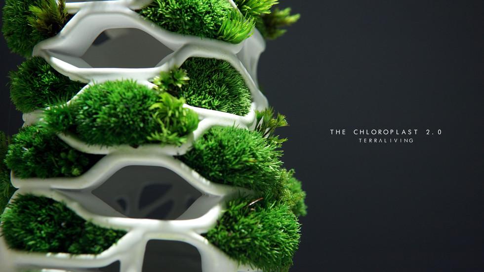 the-chloroplast-2.0_12.jpg