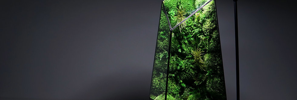 The Vertex ZERO (L) - Pure Moss Wall