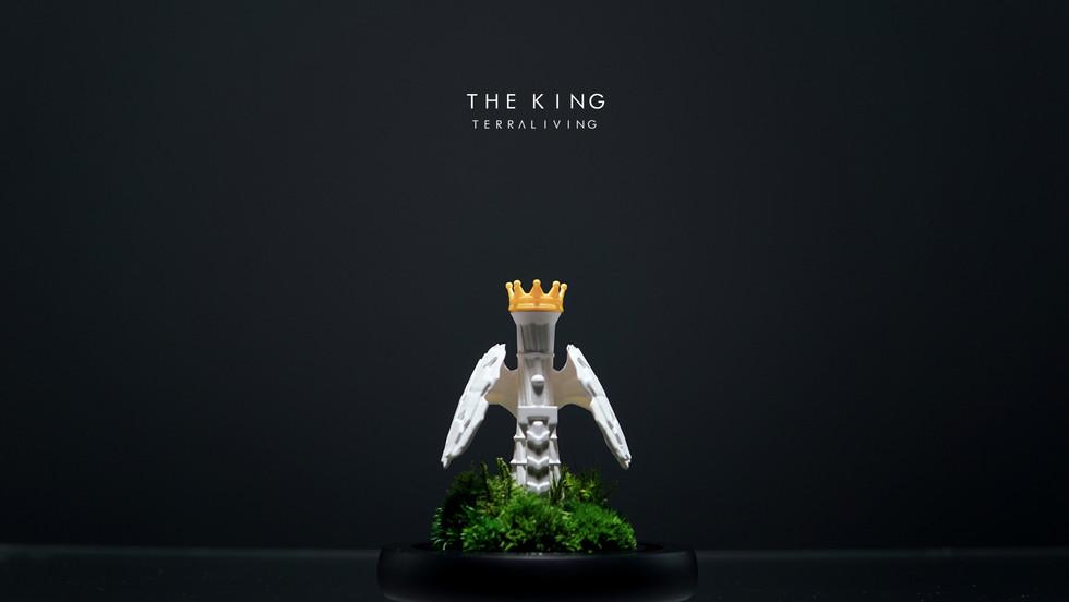 the-king-by-terraliving-terrarium_4.jpg