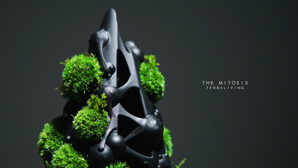mitotis-terraliving_7.jpg