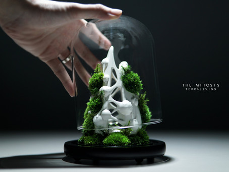 """""""The Mitosis - Cytokinesis, White Edition"""", a ZERO Moss Botanical Sculpture by TerraLiving"""