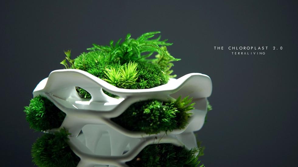 the-chloroplast-2.0_9.jpg