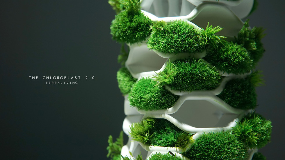 the-chloroplast-2.0_17.jpg