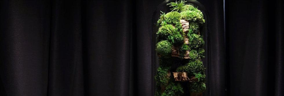 The Rainforest Colony XL, ZERO Moss Botanical Sculpture