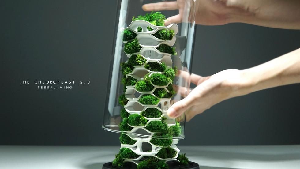 the-chloroplast-2.0_1.jpg