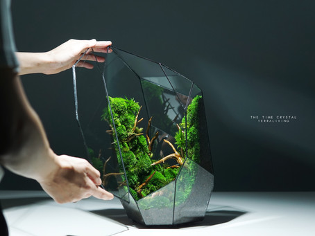 A closer look at The Time Crystal - a ZERO Moss Botanical Collection in geometrical glass sculpture
