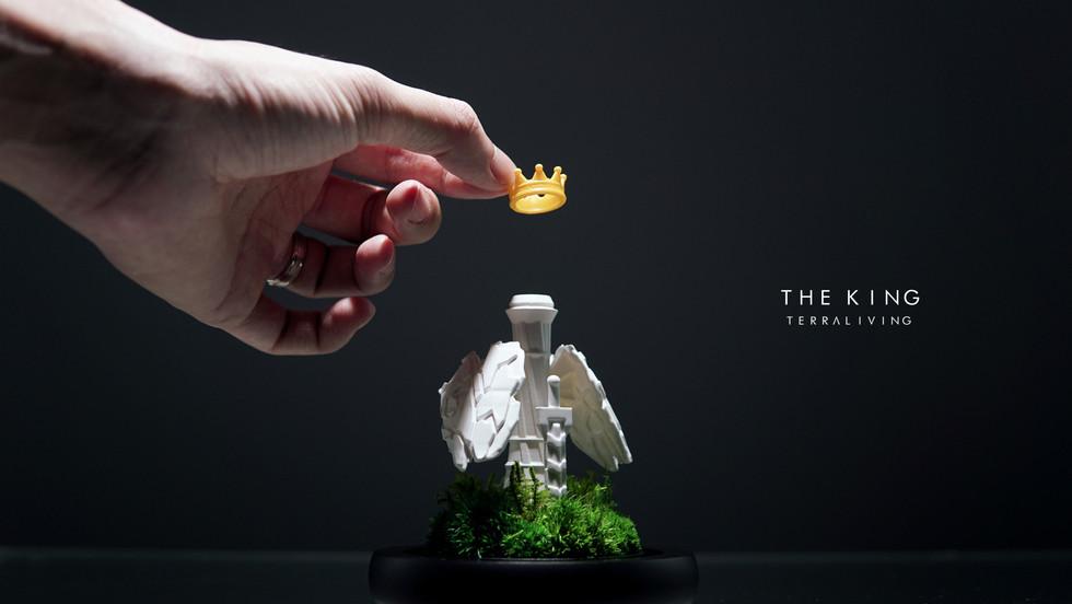 the-king-by-terraliving-terrarium_3.jpg