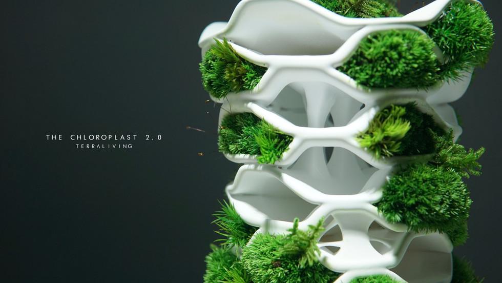 the-chloroplast-2.0_14.jpg