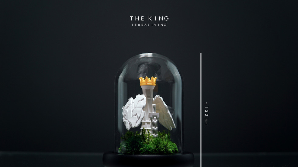 the-king-by-terraliving-terrarium_measurement.jpg