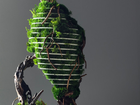 The Heart - A Parametric Botanical Sculpture is departing from TerraLiving to the US