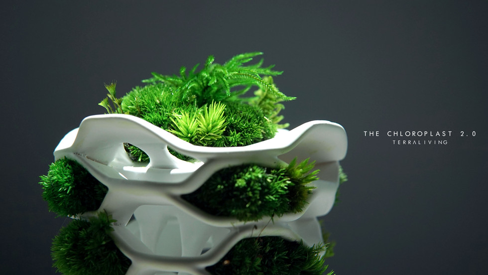 the-chloroplast-2.0_13.jpg