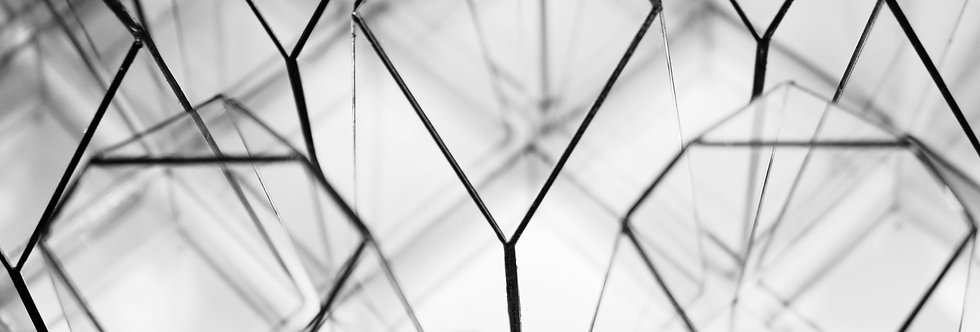 "EMPTY ""The Vertex"", Geometric Terrarium, Exclusive design by TerraLiving Gallery"