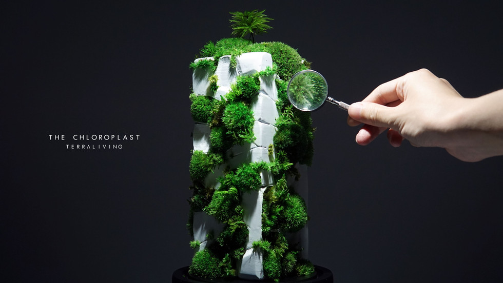chloroplast-1.0_2.jpg