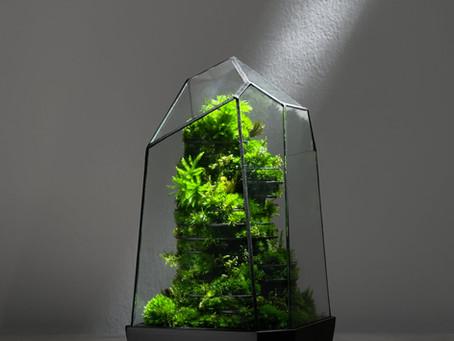 Parametric BioArt Botanical Sculpture, The Mitochondria by TerraLiving