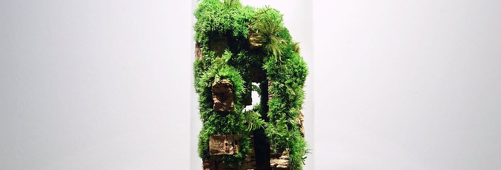 The Rainforest Colony L, ZERO Moss Botanical Sculpture