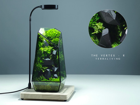 The Vertex - R, Preserved Moss Wall Terrarium with 3D printed generated sculpture by TerraLiving