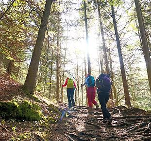 Frauen Workshop, Bergwandern und Coaching im Chiemgau, Gruppencoaching, Innere Grenzen auflösen
