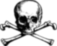 kisspng-skull-and-bones-skull-and-crossb