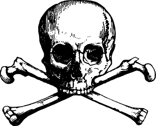 kisspng-skull-and-bones-skull-and-crossb