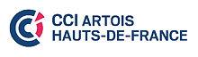 Logo CCI ARTOIS.jpg