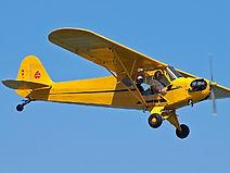 Piper Cub.jpg