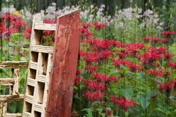 Balleycanoe Barn Flowers