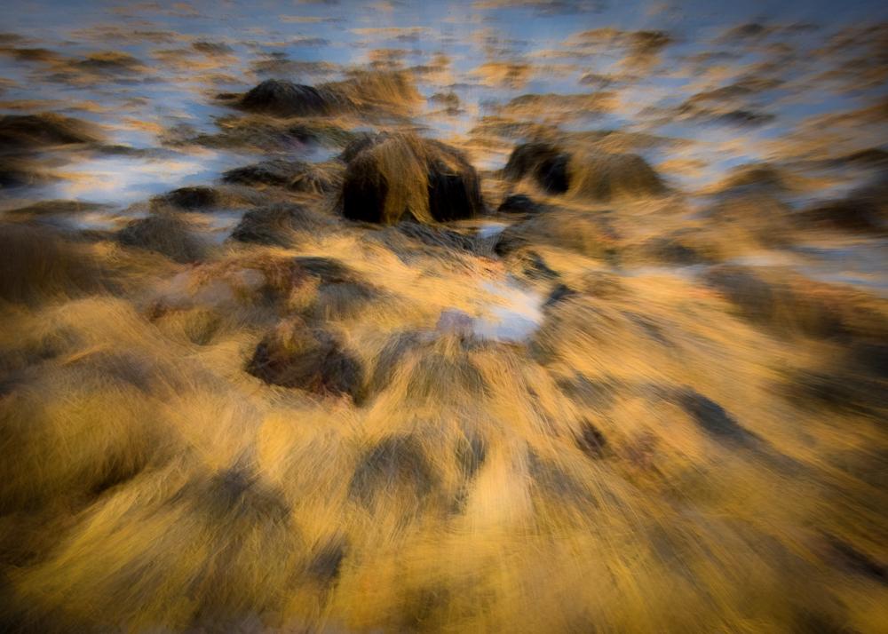 Seaweed Blur