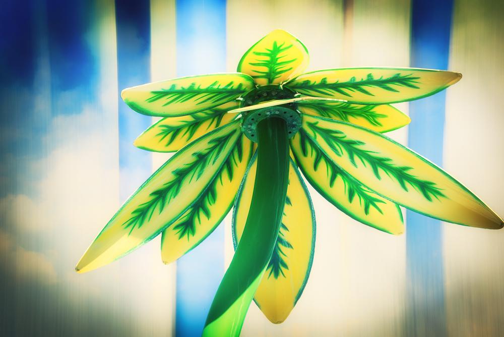 Play Flower