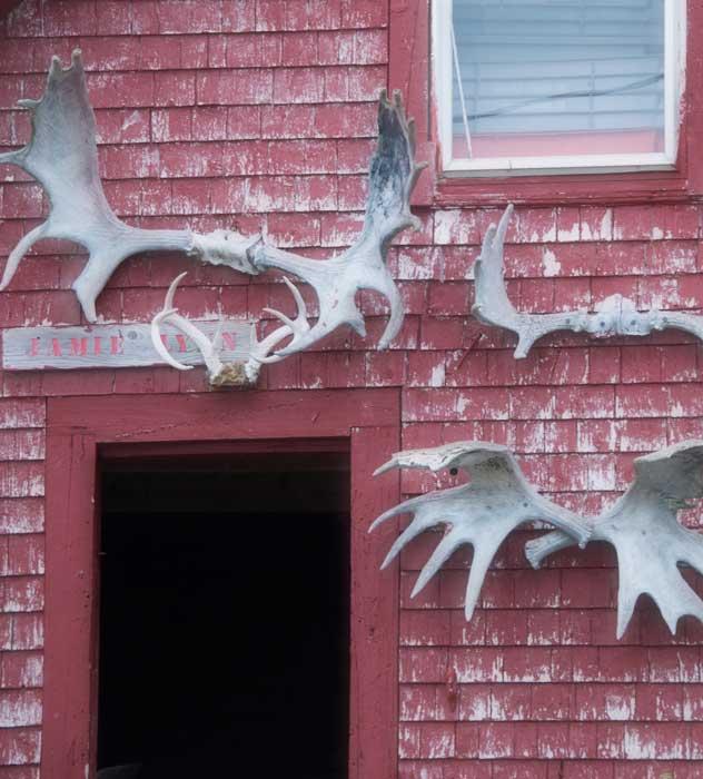 Moose House
