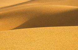 Jaisalmer Desert Ribbons