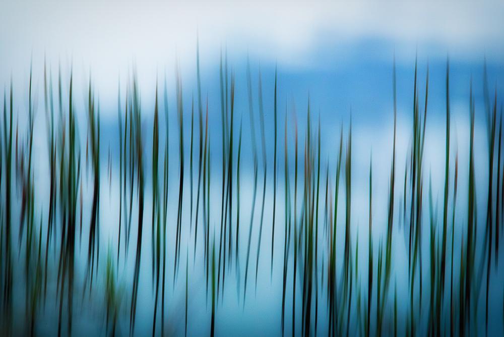 Weed Blur