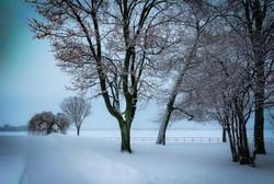 Snowy RMC View