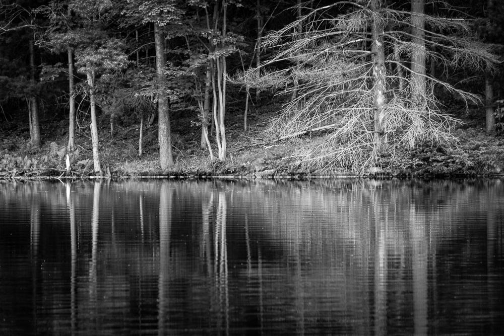 Devil Lake Reflection