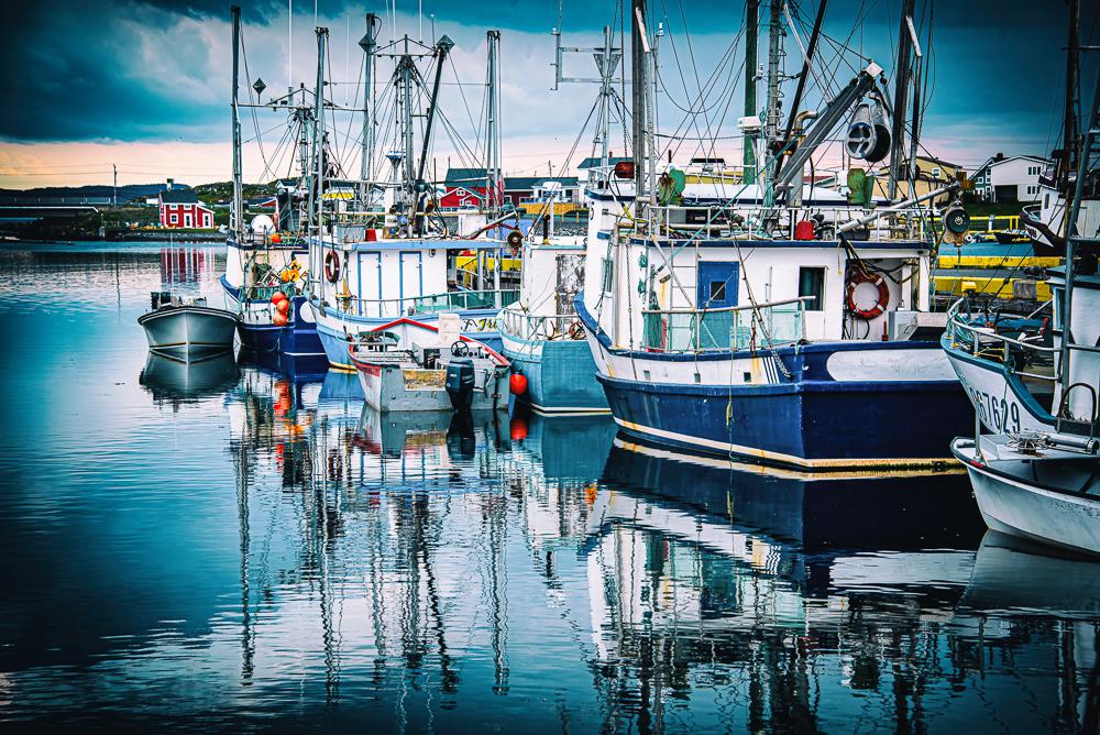 Twillingate Harbour
