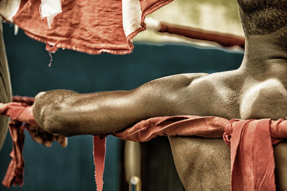 Havana Cuba Boxer