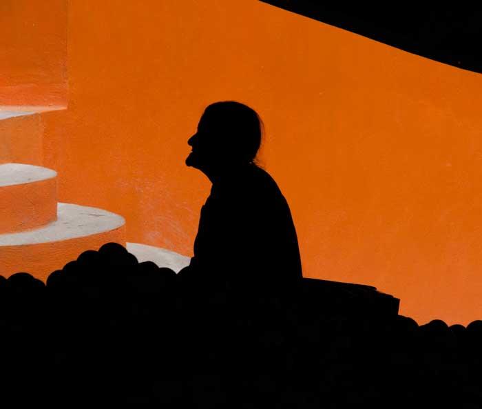 Silhouette on Orange
