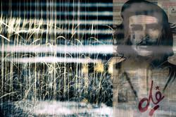 Rainy Che