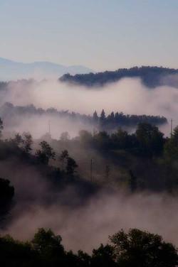 Three Poles in the Mist