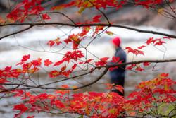 Red Cap Chippewa Falls Ontario