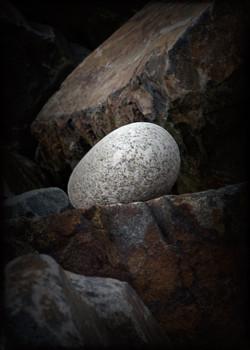 Rock Vignette