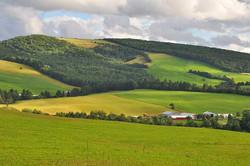 Sussex Hills