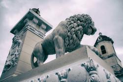 Lion 2 Cienfuegos